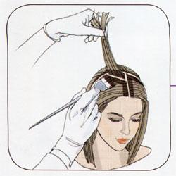 Окрашивание волос делим на зоны